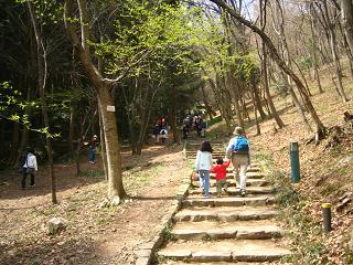 mikamoyama-0804-204