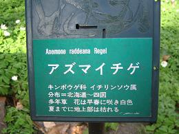mikamoyama-0804-252