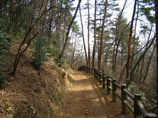 mikamoyama-0804-259