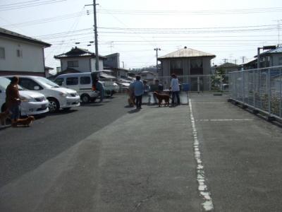 BLOG2008_0415モー子0010