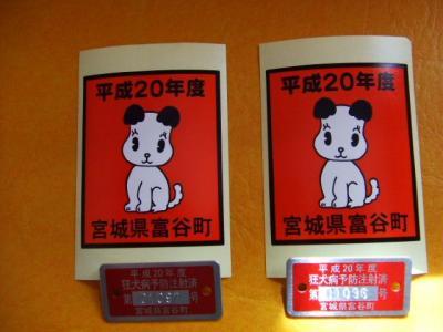 BLOG2008_0415モー子0014