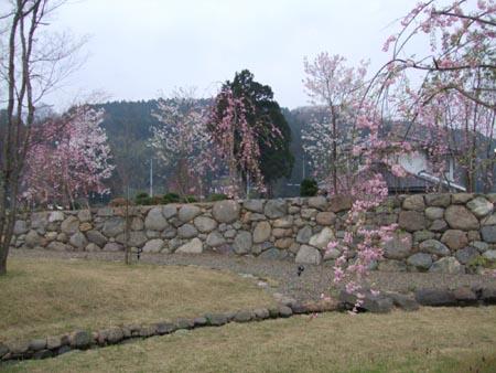 2008_0417春0040