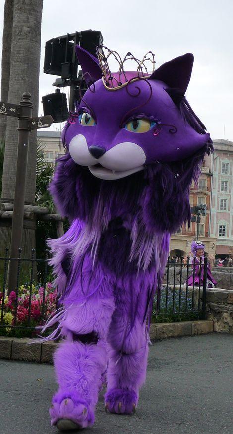 ザンビ 紫猫