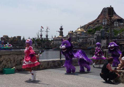 プリマ紫猫2