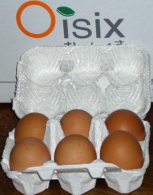 おいしっくすの卵