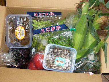 和郷園野菜0724