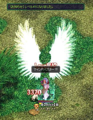 ヨリゼニ41の羽根