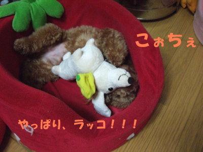 プー親子     おもちゃ② (2)