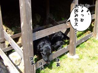 伊豆高原の旅(2)