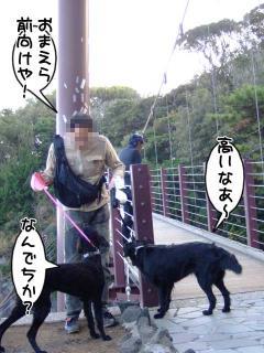 伊豆高原の旅(10)