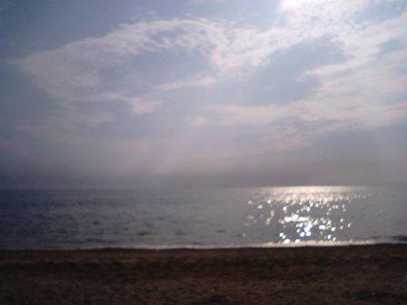 海は広い!