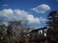 北国の春という感じH200325