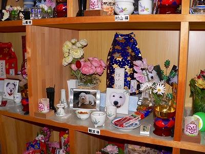 写真キャプション=ペットの遺骨が預けられた納骨堂の1区画。買主の愛情がヒシヒシと感じられる
