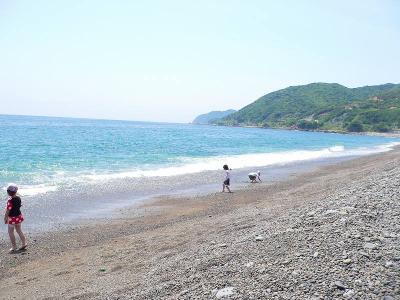 写真キャプション=「煙樹ヶ浜」から「日の岬」の方を眺めた風景