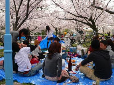 """写真キャプション=大阪の淀川沿いで""""生""""の饗宴を繰り広げる若者たち"""