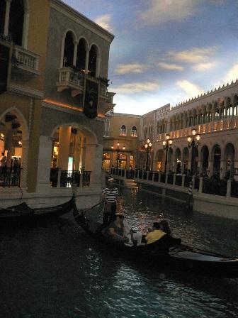 The Venetian Hotel1