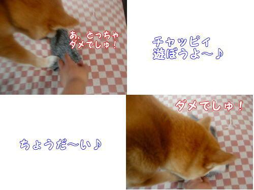 kutsushita0031.jpg