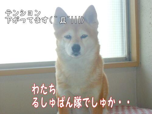 kutsushita0131.jpg