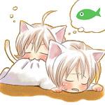 月&SHIRO