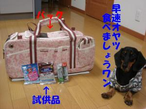 DSC01698_convert_20080316133333.jpg