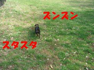 DSC01947_convert_20080328070102_convert_20080328072151.jpg