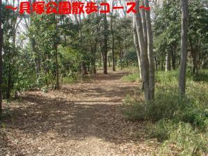 DSC01950_convert_20080328070145_convert_20080328072007.jpg