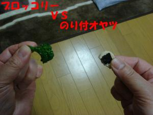 DSC02208_convert_20080409190732.jpg