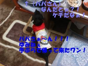 DSC02454_convert_20080416194242.jpg