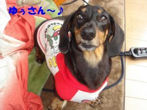 DSC02525_convert_20080425201122.jpg
