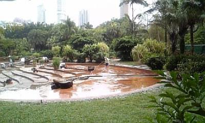 九龍公園掃除中