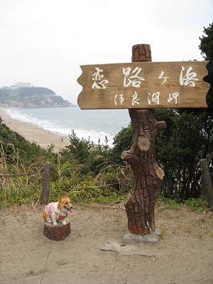 いらご岬頂上3.23