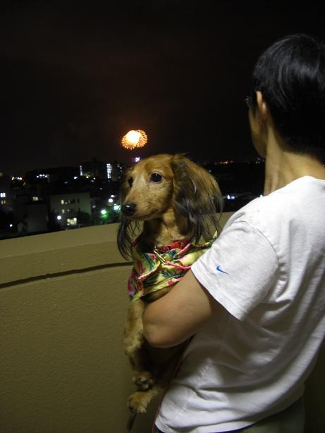 2008みなと祭6