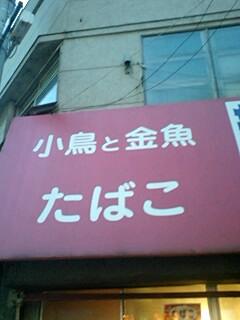 20080329215603.jpg