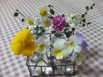 フラワーベースにお花♪