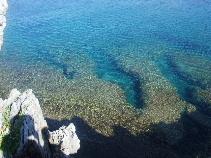 辺戸岬 透ける海