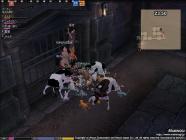 mabinogi_2005_12_09_042.jpg