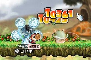 Maple0003 (2)