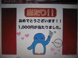 img20080613_p.jpg