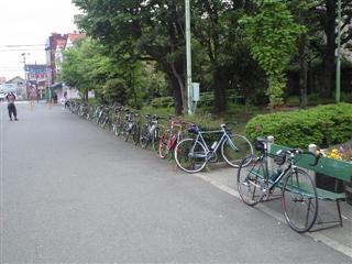 自転車品評会!?いろんな自転車があってこれだけで楽しめます!