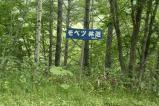 3藻別林道