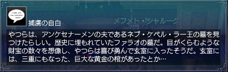 永遠の矢車菊情報2