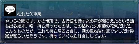永遠の矢車菊情報5
