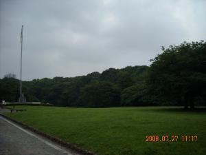 明治神宮の芝生1