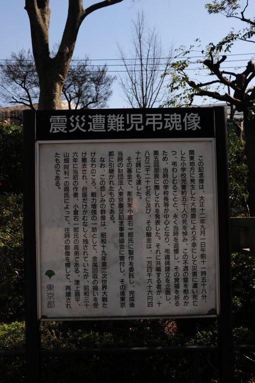 sinsai_2.jpg