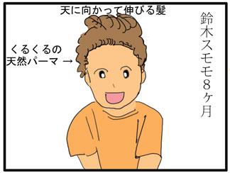 スモモの髪型