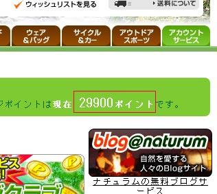 20080306_001.jpg