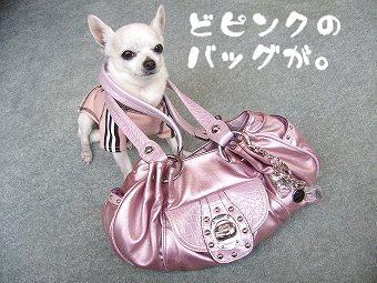 pinkbag1.jpg