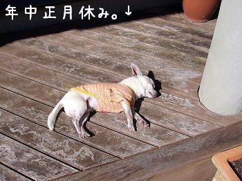 yasumipuku.jpg