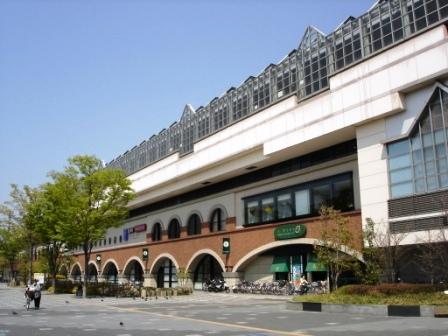 station089.jpg